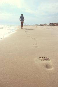 Amenities Ocean Ridge: the Area | Suzanne Polino REALTOR